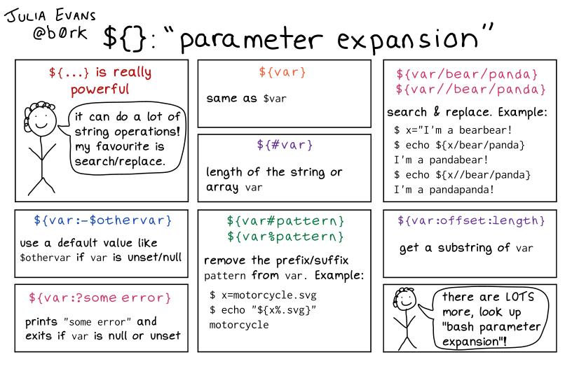 Julia Evans's comic explaining bash parameter expansion!